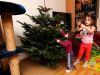 Mit der kleinen Schwester den Weihnachtsbaum schmücken